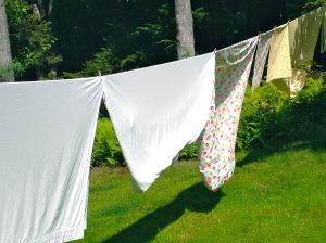 Jodi Paloni laundry on the line