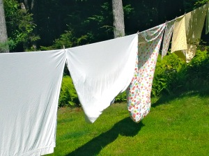 Jodi Paloni laundry on the line
