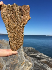 Jodi Paloni Vermont rock at Maine coast